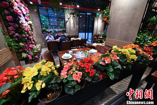 昆明现鲜花餐厅 花香伴客用餐